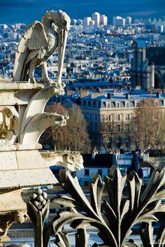 Ile de la Cité, view from Notre Dame, Paris IV