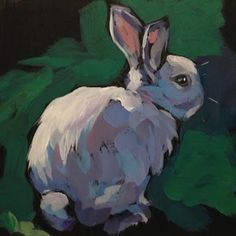 Feb 12, A Bunny