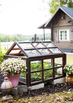 Pieni kasvihuone suojaa yrttejä paleltumiselta. Katso Meidän Mökin ohjeet ja rakenna kasvihuone vanhoista ikkunoista!