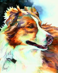 Cocoa Lassie Collie Dog Painting by Christy Freeman - Cocoa Lassie Collie Dog Fine Art Prints and Posters for Sale