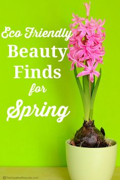 A list of Eco Friendly beauty goodies to get your skin ready for Spring!