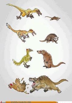 Biology 101: Evolution is an Unforgiving Force