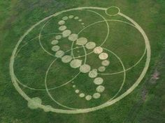 A Korean photographer has published photos of a huge crop circle formation that was discovered on June 3, 2008 in a cultivated field of (so far) unknown crop near Boryoung City in South Korea