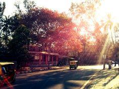 Koramangala Sunset