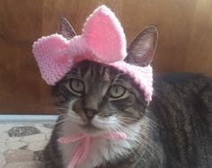 Items similar to Bow Cat Hat, knit hat for cat, cat costume, halloween on Etsy Bow Cat Hat by StitchedAdventures on Etsy Always aspired to figure out how to knit, but not certain the place to begin? Costume Chat, Cat Costumes, Costume Halloween, Chat Crochet, Cat Sweaters, Cat Accessories, Cat Hat, Animal Projects, Cat Pattern