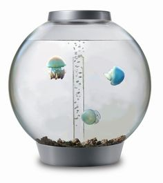 I want this so bad!!  How to Start a Jellyfish Tank in 12 Steps