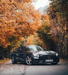 I appreciate this good looking thing My Dream Car, Dream Cars, Muscle Cars, Bmw Interior, Mercedes Benz Wallpaper, Mercedes Amg Gt S, Bmw Wallpapers, Top Luxury Cars, Car Photography