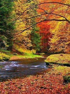 Autumn tranquility