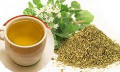 Les champignons qui apparaissent habituellement sur les ongles ne sont pas seulement disgracieux, ils peuvent aussi menacer notre santé et nécessiter un traitement approprié. Par conséquent, si vous avez des ongles jaunes, verts ou bruns, n'attendez pas d'essayer les remèdes que nous proposerons pour soigner les mycoses des ongles! Vous devriez toujours consulter votre médecin […] Herbal Medicine, Herbal Remedies, Dog Food Recipes, Herbalism, Spices, Nutrition, Fruit, Tableware, Youtube