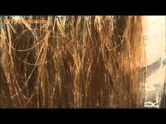 UNIFICAR 2 COLORES (oscuro y claro). - YouTube