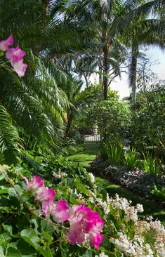 Naples Florida landscape architecture...