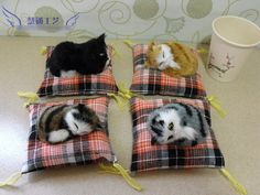 $22.67 (Buy here: https://alitems.com/g/1e8d114494ebda23ff8b16525dc3e8/?i=5&ulp=https%3A%2F%2Fwww.aliexpress.com%2Fitem%2FFree-shipping-4-pieces-lot-Cute-Mini-High-Imitation-Cats-Model-Set-Pusheen-Neko-Atsume-Car%2F32622804151.html ) Free shipping (4 pieces/lot) Cute Mini High Imitation Cats Model Set Pusheen Neko Atsume Car decoration Hand-made Toy Craft gift for just $22.67
