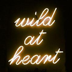 Wild at heart!