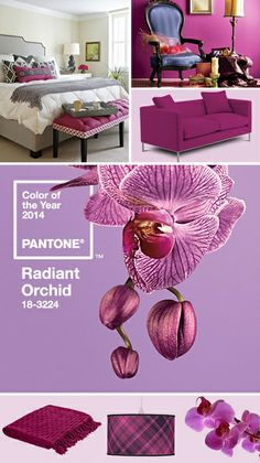 2014 Color of the Year • Ready for Radiant? • How To Use This Color To Decorate Your Space! photo credit - www.pantone.com