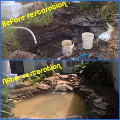 Pond restorations by Nature Coast Aquascape in Tampa Bay Area and Floral City, Florida (FL)  (727) 258-4114 Tampa Bay ~ (352) 637-9004 Floral City