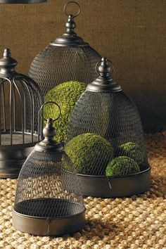 Mesh Domes in Metal Trays