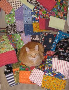 Let me try this quilt out before you sew