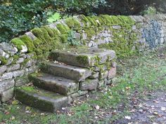 mounting block for horses portable - Google Search