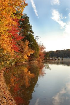 Lake Anna, VA  #fall #Virginia #Lake_Anna