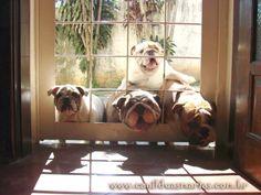 HELLOOO  OPEN THE DOOR PLEASE :D