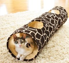 Amazon.com: Giraffe Print Cat Tunnel Play Toy By Collections Etc: Pet Supplies