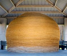 "World's Largest Ball of Twine, Cawker City, KS, is 40 ft. in circumference and weighs lbs. The sight to behold is located off U. Highway in an area referred to by local officials as ""downtown"" Cawker City. Wall Drug, Kansas Usa, Kansas City, North Platte, Roadside Attractions, World's Biggest, Travel And Leisure, Worlds Largest, Places To Go"
