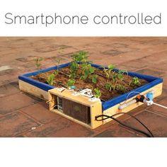 Raspberry Pi Iot, Projets Raspberry Pi, Raspberry Pi Projects, Rasberry Pi, Aquaponics Greenhouse, Aquaponics Diy, Aquaponics System, Hydroponics, Hydroponic Farming