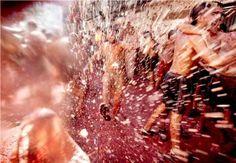 스페인 토마토 축제