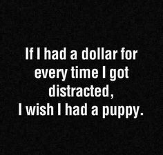If I had a dollar for every time I got distracted, I wish I had a puppy.