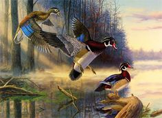 Famous Duck Paintings | Quail Unlimited chose Randy McGovern for its 1997 Conservation Stamp!