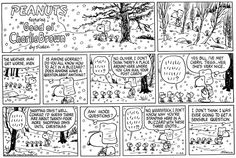 This strip was published on November 26, 1978. Snoopy and Woodstock.