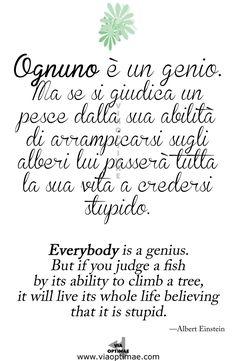 Citazione Quote Albert Einstein Ognuno è un genio Everybody is a genius. da Via Optimae, www.viaoptimae.com