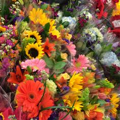 Closeup of our wide selection of flowers in our 10th & Reed store. #ACMEMarkets