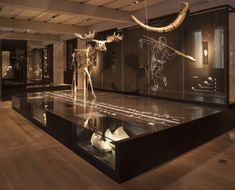 Neues_Museum_Berlin_04                                                                                                                                                                                 More