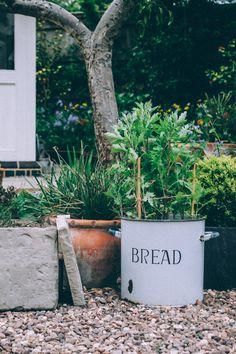 bread bin planter inspiration