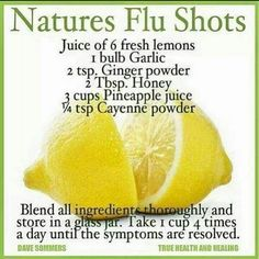 Natures Flu Shot Flu Season, Seasons, Wellness, Good Morning, Dairy, Good Day, Bonjour, Seasons Of The Year, Buongiorno