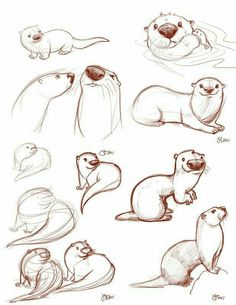Resultado de imagen de how to draw otters holding hands Animal Sketches, Animal Drawings, Drawing Sketches, Sketching, Drawing Animals, Drawing Ideas, Cartoon Drawings, Cute Drawings, Character Drawing