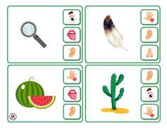 Preschool Activity Books, Preschool Education, Activities For Kids, Five Senses Worksheet, Five Senses Preschool, English Worksheets For Kids, Kindergarten Math Worksheets, Busy Book, Kids Corner