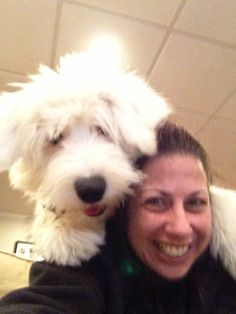 Old English Sheepdog Molly is a fresh rascal right on your shoulder - what a cute clown