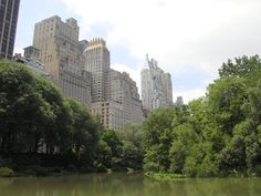 #Central Park #NYC