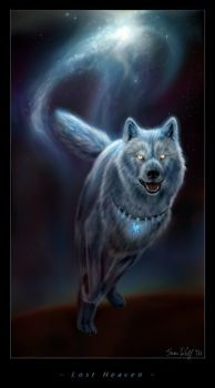 My personal character, the Celestial Wolf. I draw her a lot, too. Anime Wolf, Beautiful Wolves, Animals Beautiful, Magical Creatures, Fantasy Creatures, Native American Wolf, Wolf Artwork, Fantasy Wolf, Wolf Spirit Animal