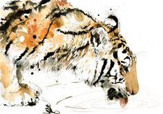 "Saatchi Online Artist: Lucy Newton; Ink, Mixed Media ""tiger drinking"""