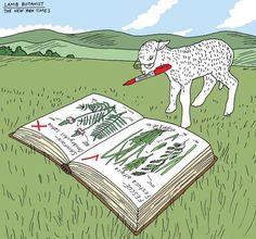 Peter Arkle - Lamb Botanist