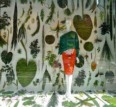 gorgeous Bergdorf window (Carolina Herrera) on Slim Paley's great blog!