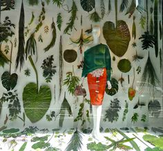 A Garden On Fifth  A botanical display to showcase Carolina Herrera's collections in the windows of Bergdorf Goodman // Green Home