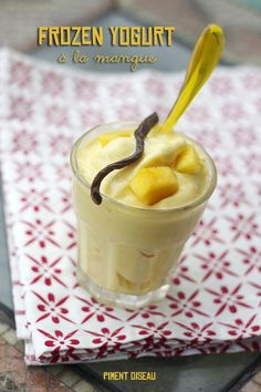 frozen yogurt à la mangue-mango frozen yogurt