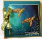 Sea Turtles – Stampin' Up! Card |