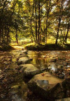 River Derwent by Paul Bullen on 500px