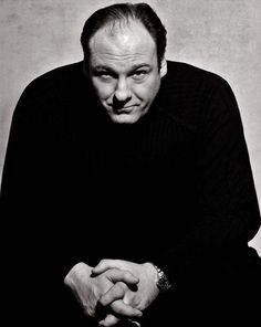 James Gandolfini is an American actor, best known for his role as Tony Soprano in HBO's The Sopranos.  He has won many awards for this role, the notable ones being 3 Emmys, a Golden Globe, 3 SAG Awards, and 3 TCA awards.  I still think he deserved more.