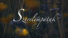 Szerelempatak (2013) documentary